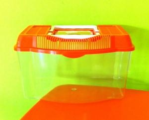 Fauna box pequeña