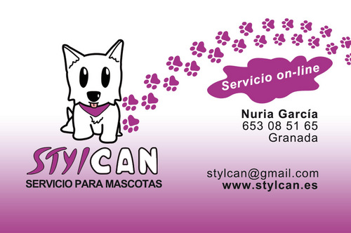 banner stylcan